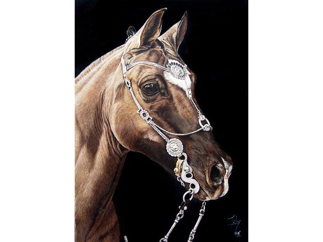 Dibujos de caballos criollos imagui for Cabezadas para caballos