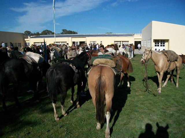 Guia practica y breve de monturas aperos y recados for Monturas para caballos