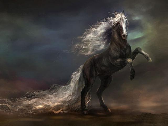 Galería de Fotos: Imágenes pinturas y dibujos de caballos ...